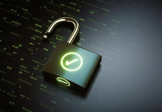 100% потока запроса рефереров шифрует Яндекс